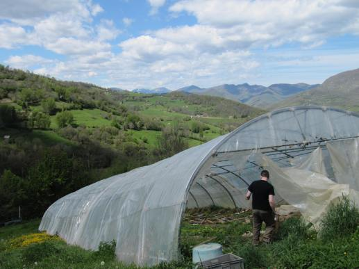 A polytunnel in southern France